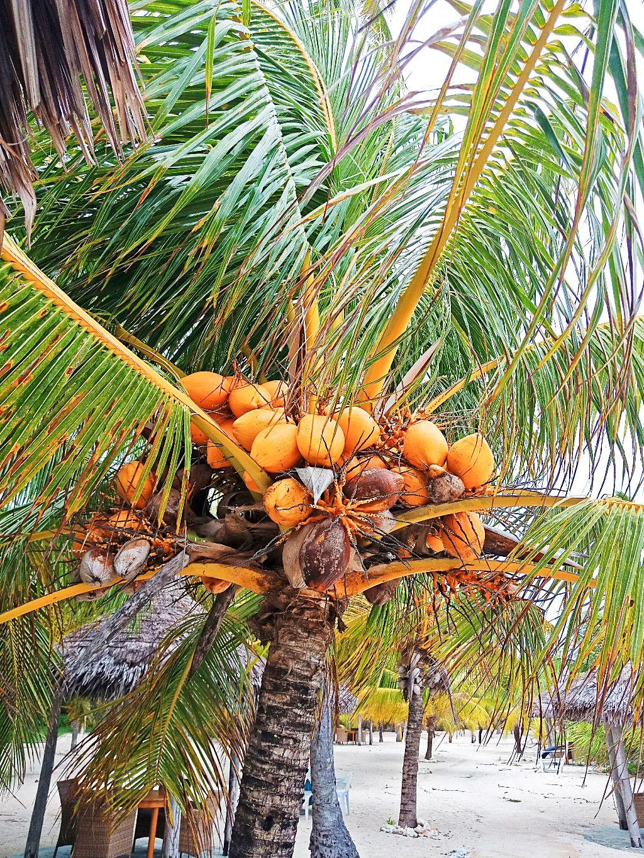 Filipínský Voodoo ostrov Siquijor